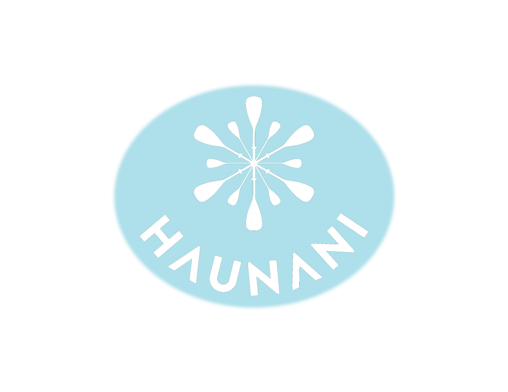 our logo is 12 paddles in the form of a snowflake